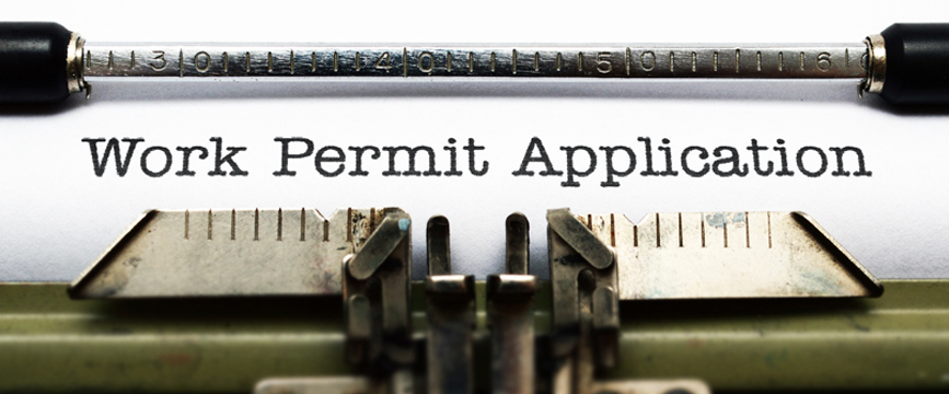 Provisional Work Permit