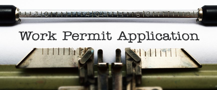 Provisional-Work-Permit_opt